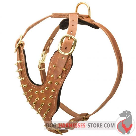 Exclusive Fashion Studded Leather Dog Harness
