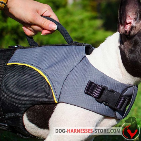 Boxer Nylon Dog Harness for Rehabilitation and Winter Warming