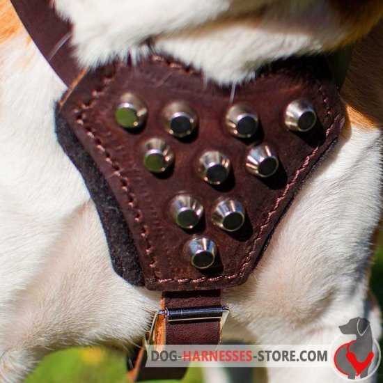 Boxer Leather Puppy Harness with Studs