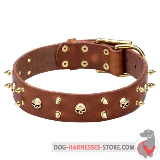 Rock Style Leather Dog Collar with Brass Spikes and Skulls