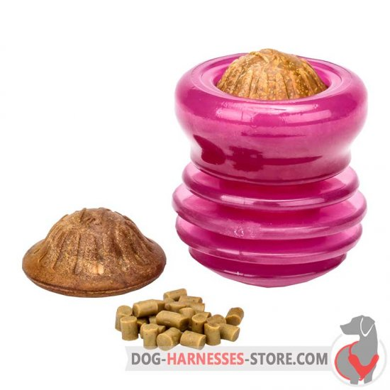 Pink Chewing Dog Toy / Big Treat Dispenser