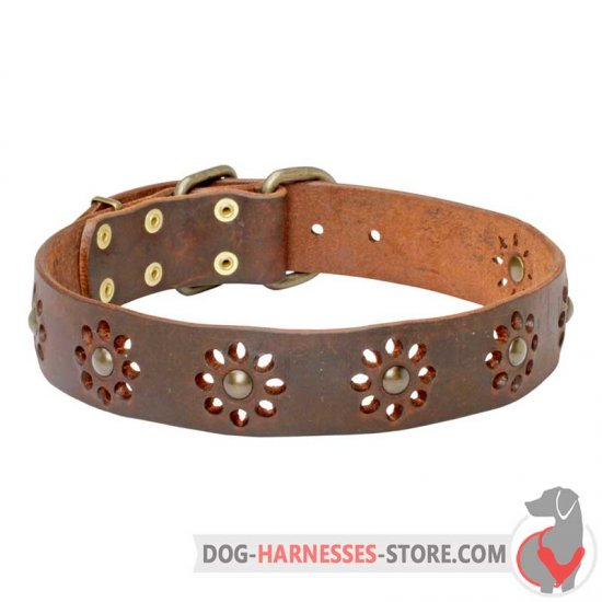 Floral Leather Dog Collar with Brass Studs