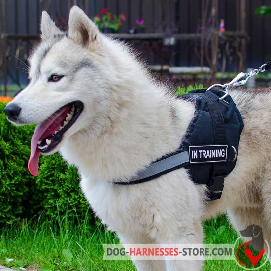 Siberian Husky Nylon Harness Reflective Nylon Dog Harness H6p 1092