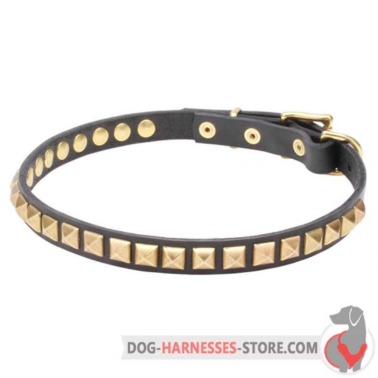 Slim Leather Dog Collar with Brass Square Studs
