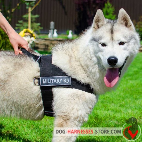 Multifunctional Nylon Siberian Husky Harness with ID Patches
