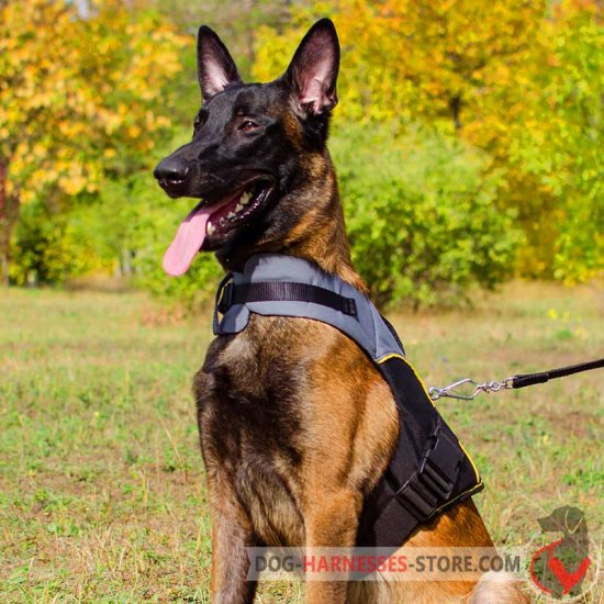 Belgian Malinois Nylon Dog Harness for Rehabilitation