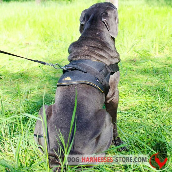 Tracking Nylon Japanese Mastiff Harness