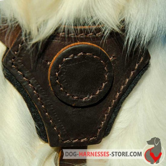 Cane Corso Leather Dog Harness for Puppy Training, Walking or Tracking