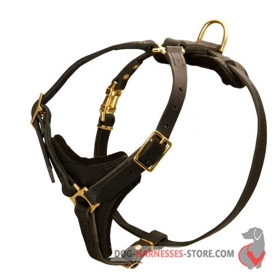 Medium Dog Harness - Control Leather Dog Harness For ALL BREEDS