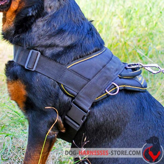 Spanish Mastiff Nylon Dog Harness for Pulling
