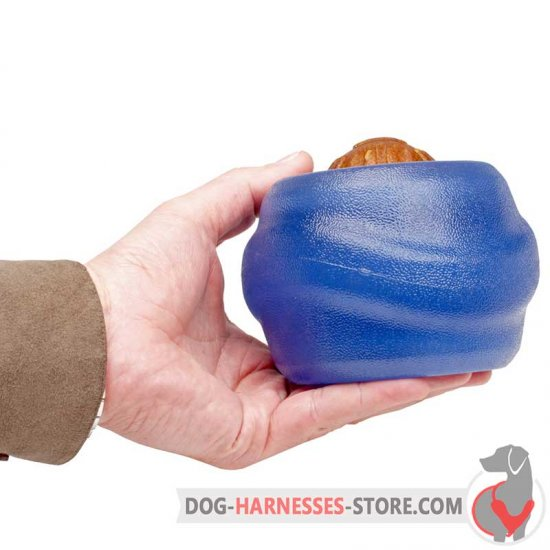 Blue Chewing Dog Ball / Big Treat Dispensing Toy