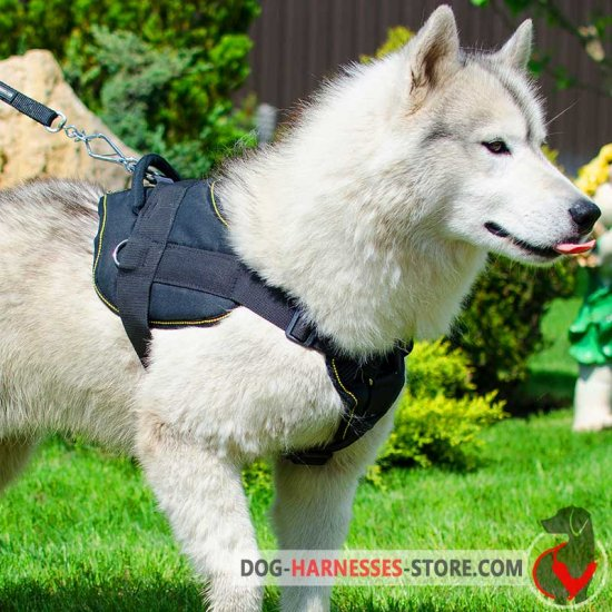 Multifunctional Nylon Siberian Husky Harness with Chest Plate