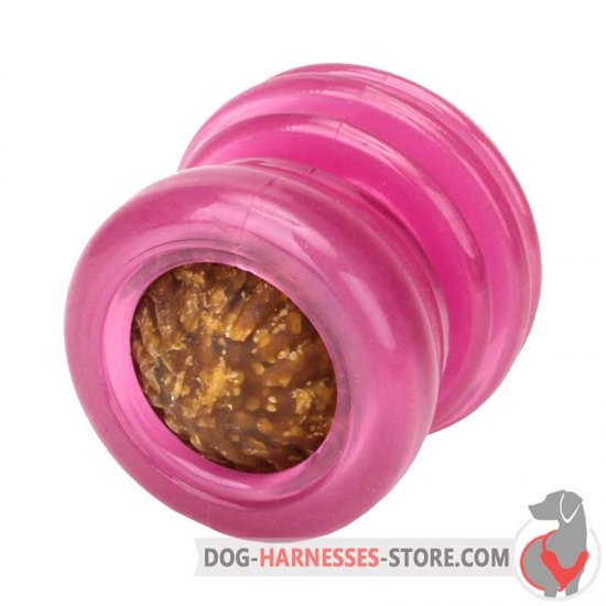 Pink Chewing Dog Toy / Small Treat Dispenser