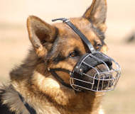 baske wire dog muzzle