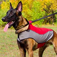 Belgian Malinois Nylon Coat for Winter Walking
