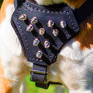 Boxer Spiked Leather Dog Harness for Puppy