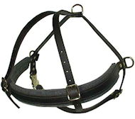 Tracking  Pulling Walking Leather Dog Harness