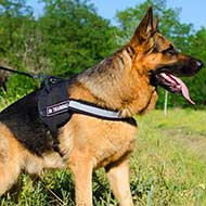 Reflective Nylon German Shepherd Harness with Handle