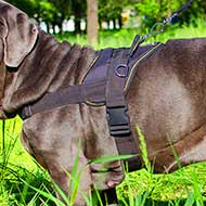 Nylon Multi-Purpose Pointer Harness
