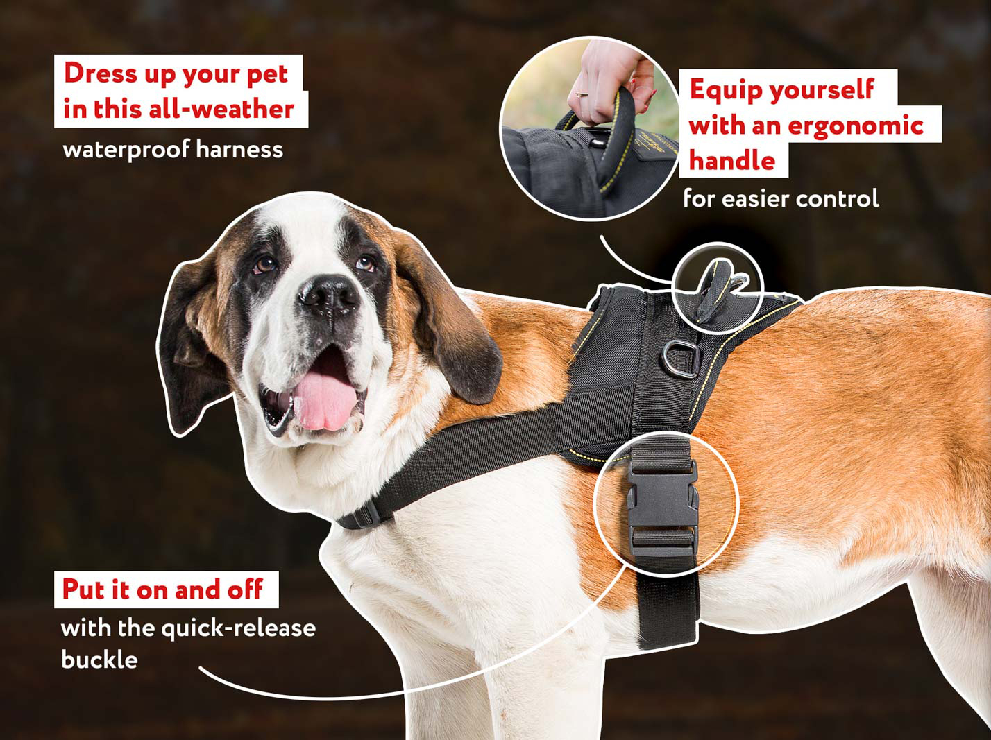 All Weather Nylon Dog Harness with Handle and Side D-rings