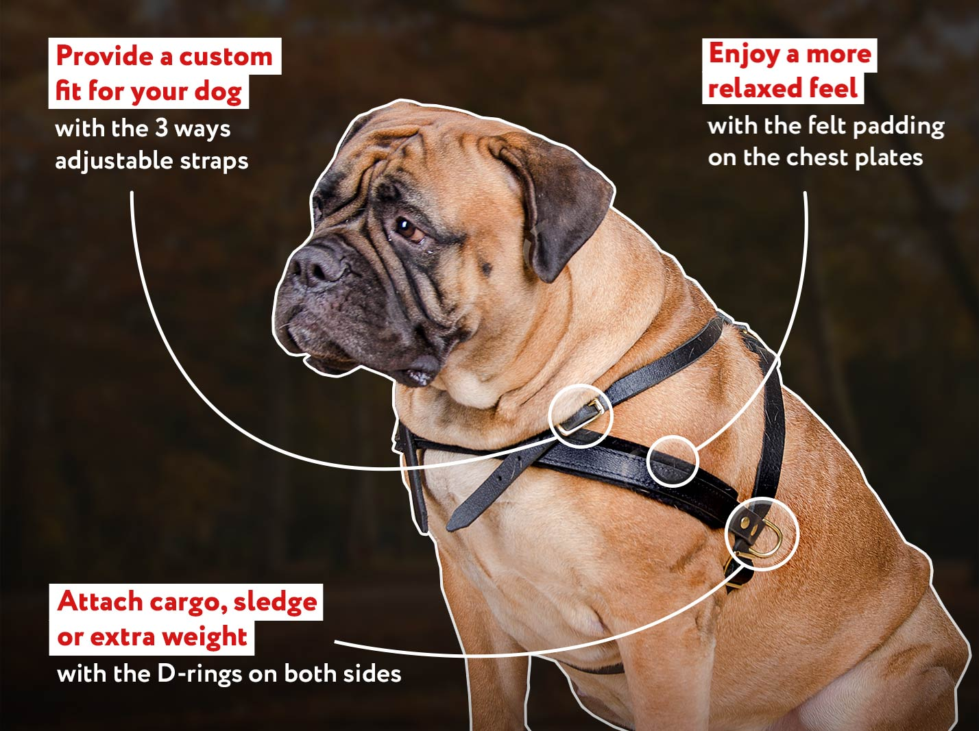Tracking/Pulling Leather Dog Harness for All Breeds