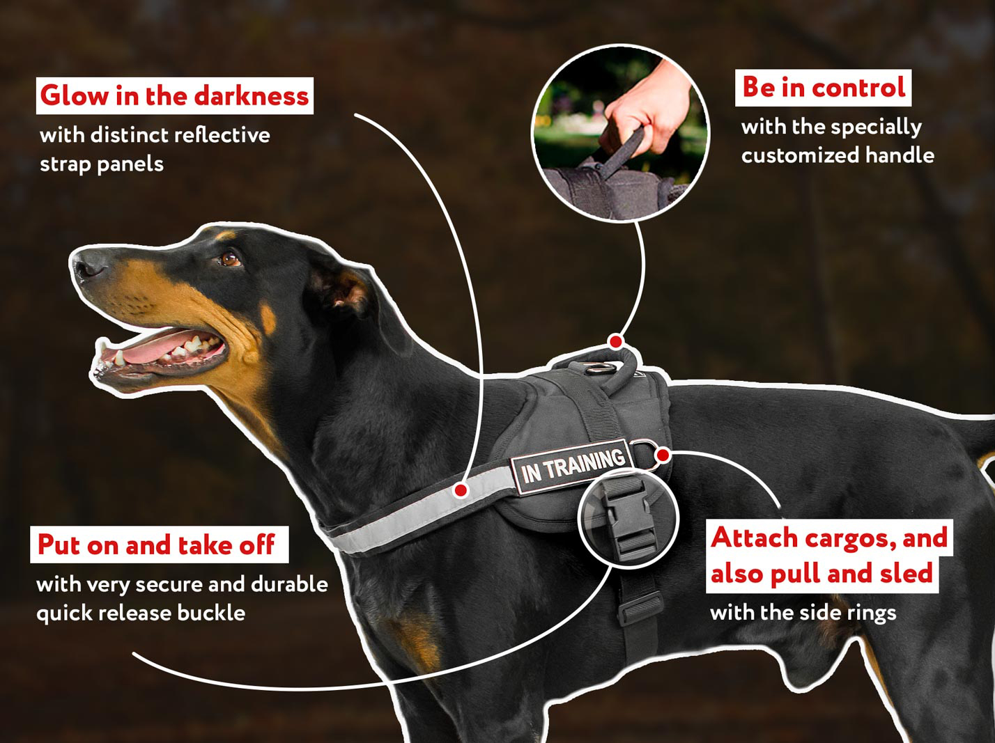 All Weather Reflective Dog Harness