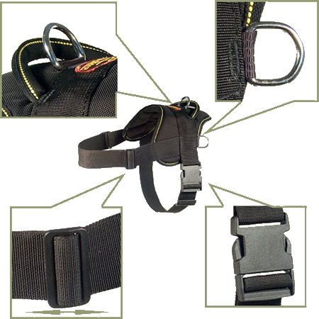 nylon dog harness for Vizsla dog