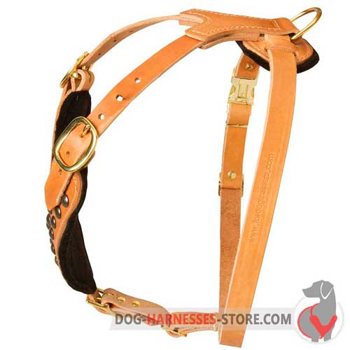 Leather dog harness with adjustable straps