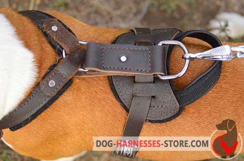 Classic Leather Dog Harness with Ring near Handle