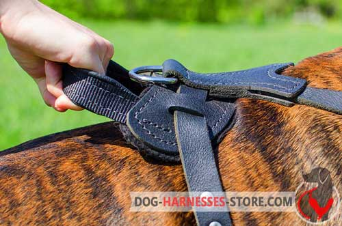 Classic design dog harness with strong handle