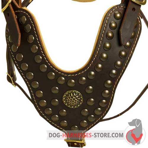 Designer leather dog harness with studs