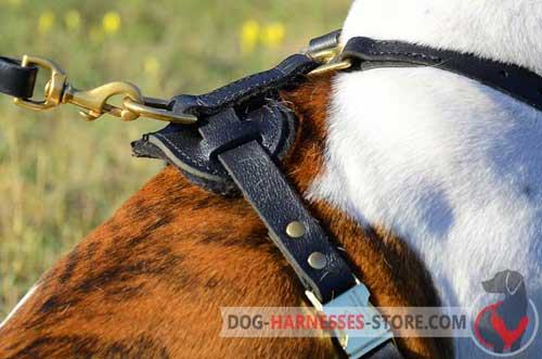 Strong Massive Brass Ring for Leash Attachment