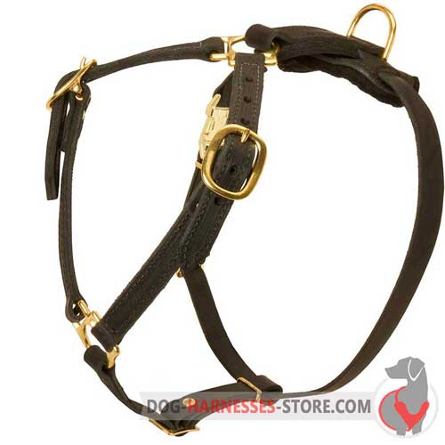 Adjuatable Leather Dog Harness for Realiable Control