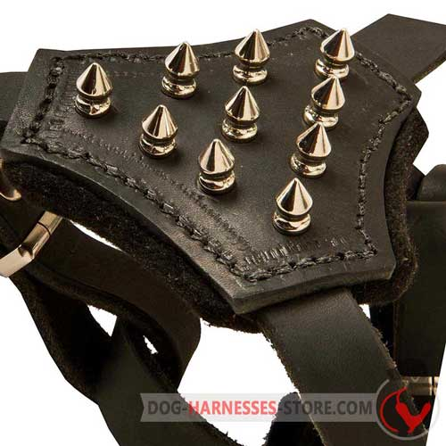Y-    shaped leather dog harness with nickel plated spikes