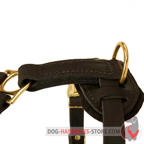 Stylish and practical leather dog harness for any purpose