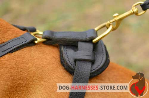 Leather dog harness with stainless hardware