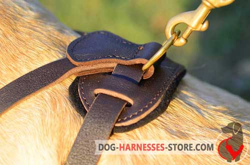 Brass D-ring to fasten a leash