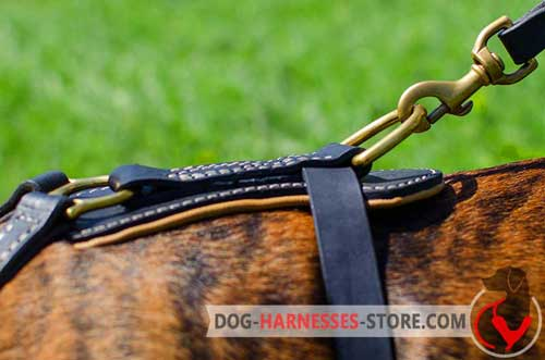 Sewed D-ring for leather dog harness