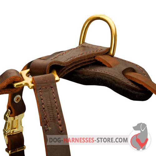Tracking leather dog harness with brass hardware