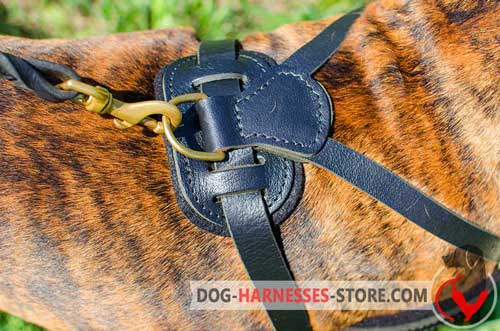 Dog Harness with D-ring for Leash Attachment