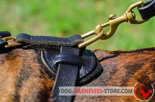 Leather Boxer Harness with D-Ring