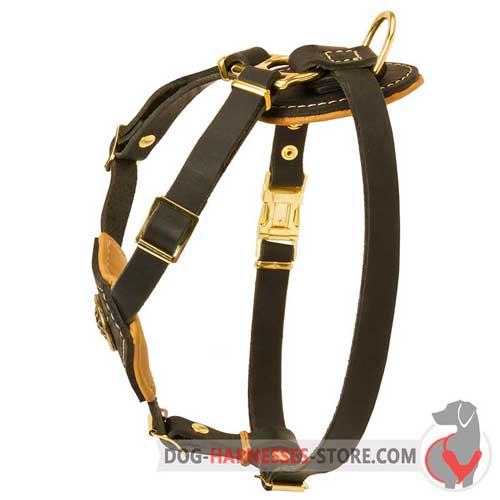 Adjustable Leather Dog Harness for Puppies and Small Breeds