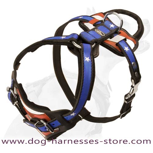 Painted Leather Dog Harness Padded With Soft Thick Felt