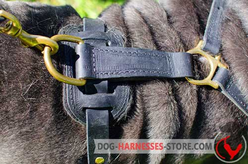 Leather Dog Harness Back Part with Brass Fittings