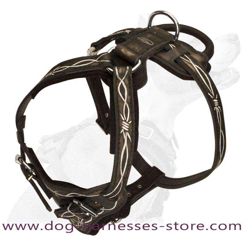 Leather Dog Harness Barbed Wire Painting BIG hand painted barbed wire leather boxer harness [h1bw 1092 leather wire dog harness at bayanpartner.co