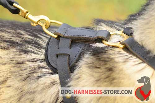 Leather Dog Harness With Solid Brass Hardware
