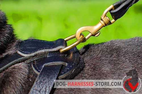 Leather Dog Harness Brass Ring Stitched on Back Plate