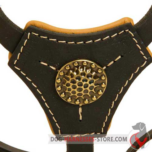 Leather Dog Harness Chest Plate Compact for Puppies