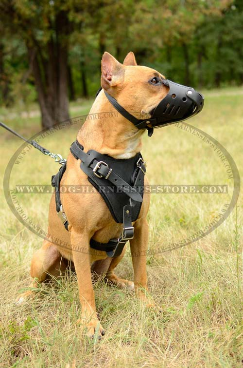 Leather Dog Harness Multifunctional