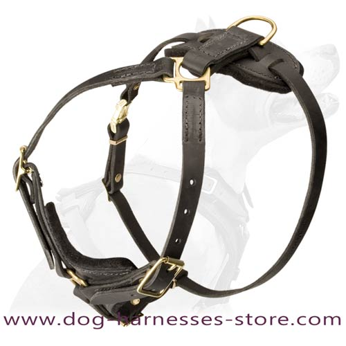 Easy Moving Dog Harness For Effective Tracking